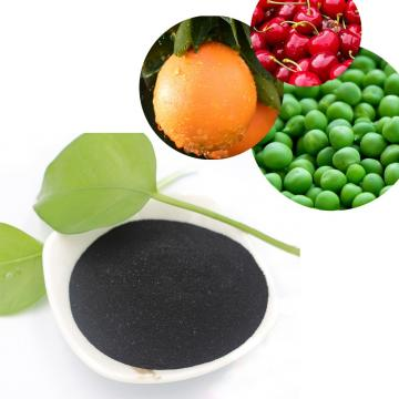 Agriculture grade 100% water solubility humic acid/super potassium humate from Leonardite